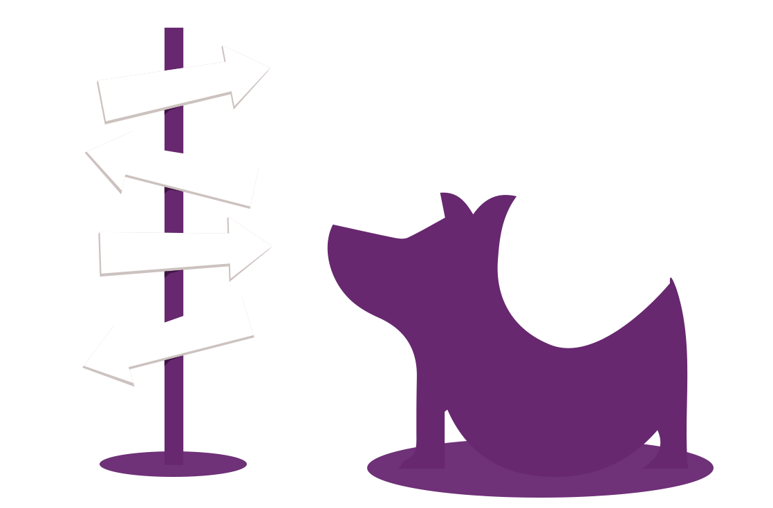 Purple Dog Event Solutions - Event Production - Evolved Service